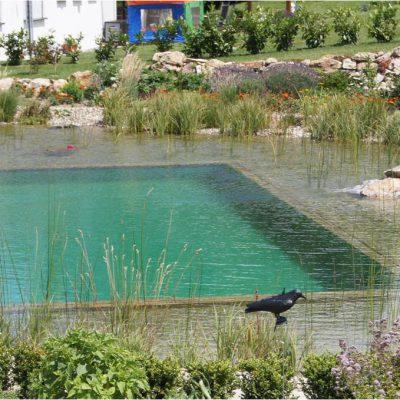 Gartengestaltung-Schwimmteich